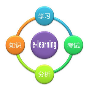 e-learning_lit